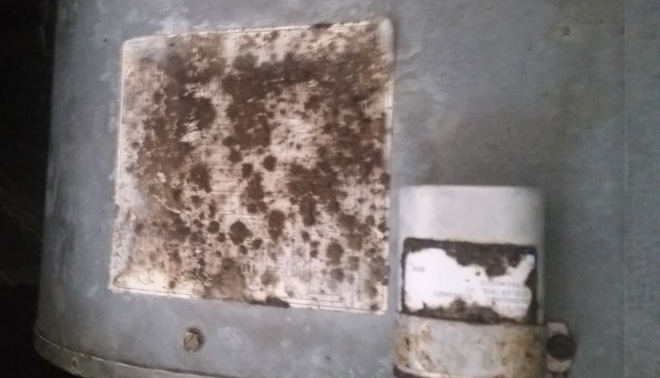 Air Duct Cleaning for Mold Spores in and near Estero Florida